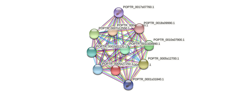POPTR_0004s20030.1 protein (Populus trichocarpa) - STRING interaction network
