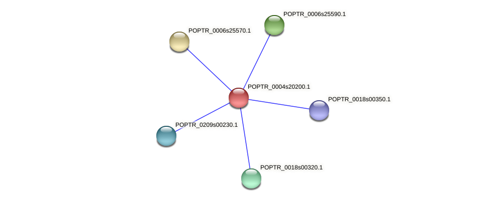 POPTR_0004s20200.1 protein (Populus trichocarpa) - STRING interaction network