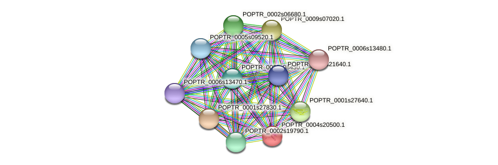 POPTR_0004s20500.1 protein (Populus trichocarpa) - STRING interaction network