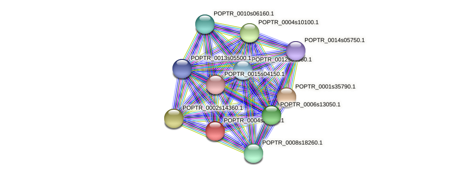 POPTR_0004s20600.1 protein (Populus trichocarpa) - STRING interaction network