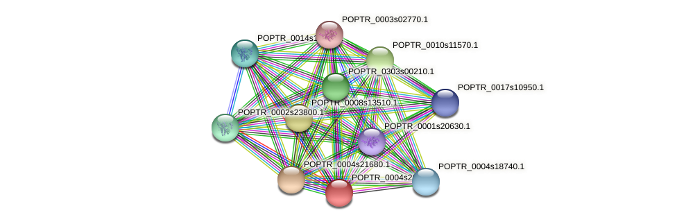 POPTR_0004s20700.1 protein (Populus trichocarpa) - STRING interaction network