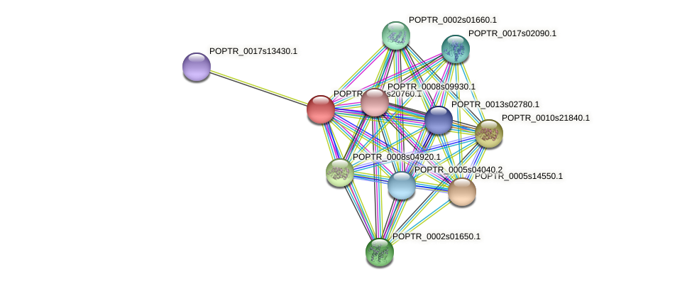 POPTR_0004s20760.1 protein (Populus trichocarpa) - STRING interaction network