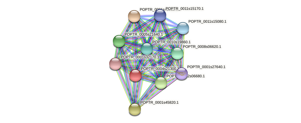 POPTR_0004s21300.1 protein (Populus trichocarpa) - STRING interaction network