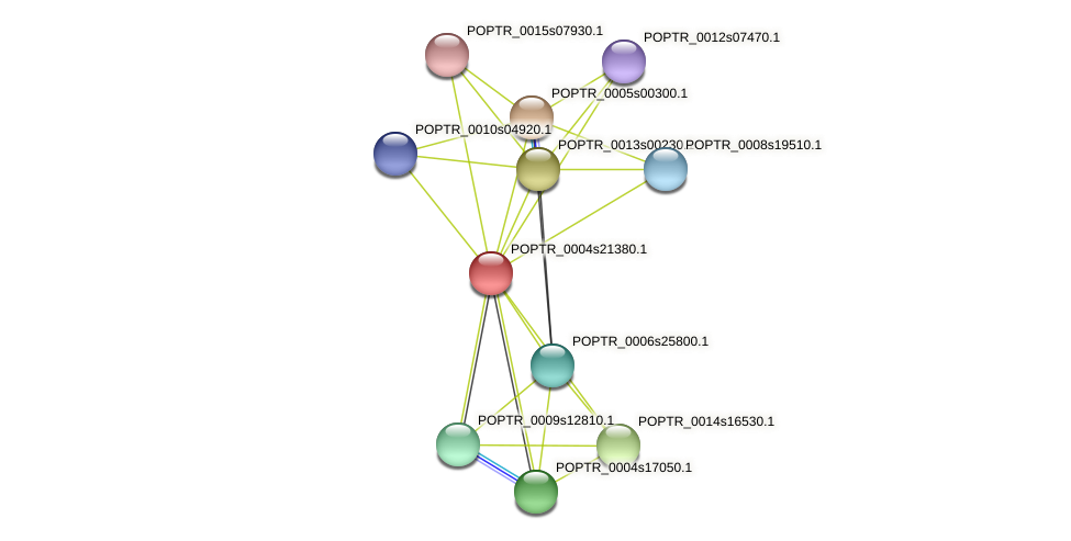 POPTR_0004s21380.1 protein (Populus trichocarpa) - STRING interaction network