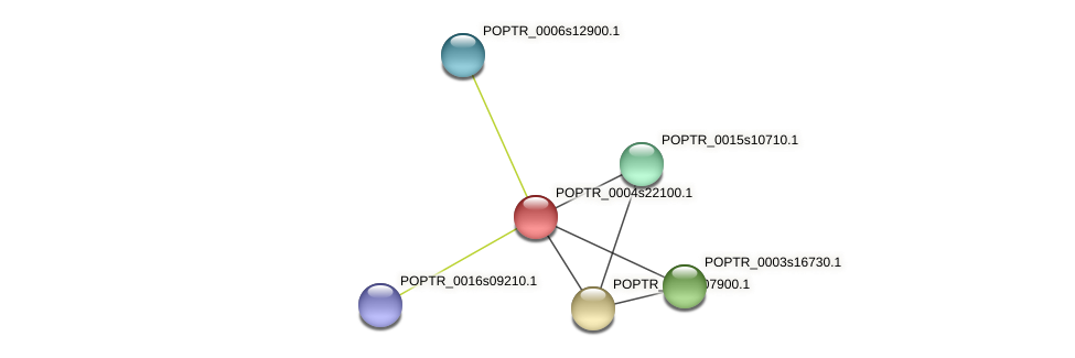 POPTR_0004s22100.1 protein (Populus trichocarpa) - STRING interaction network