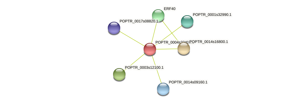 POPTR_0004s22400.1 protein (Populus trichocarpa) - STRING interaction network