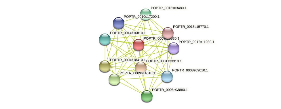 POPTR_0004s23630.1 protein (Populus trichocarpa) - STRING interaction network