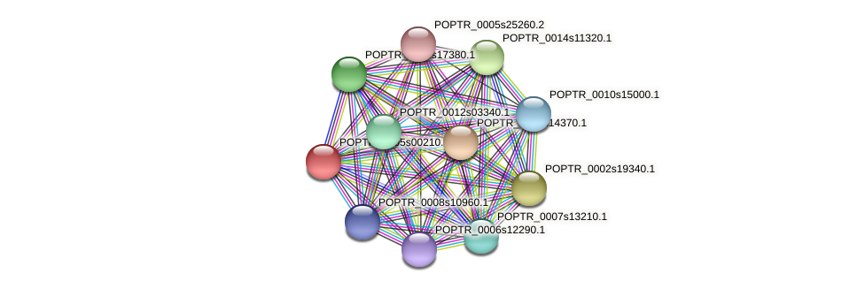 POPTR_0005s00210.1 protein (Populus trichocarpa) - STRING interaction network