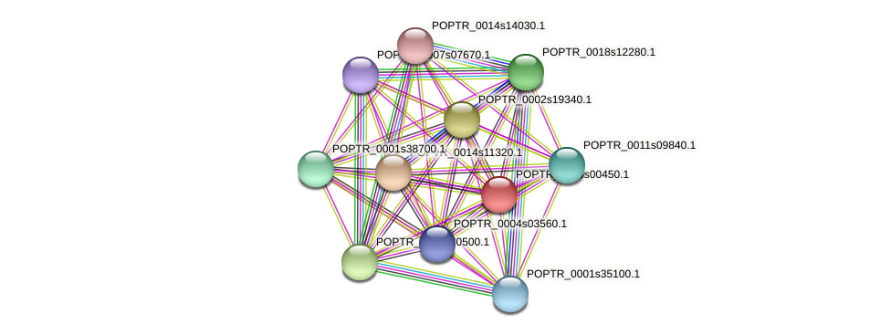 POPTR_0005s00450.1 protein (Populus trichocarpa) - STRING interaction network