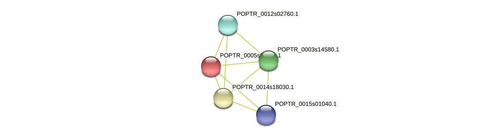 POPTR_0005s01170.1 protein (Populus trichocarpa) - STRING interaction network
