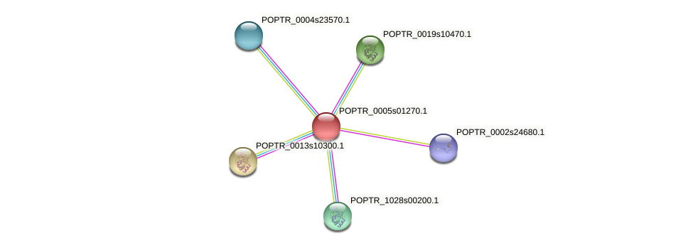 POPTR_0005s01270.1 protein (Populus trichocarpa) - STRING interaction network