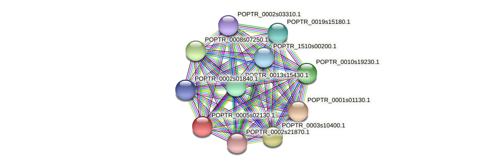 POPTR_0005s02130.1 protein (Populus trichocarpa) - STRING interaction network