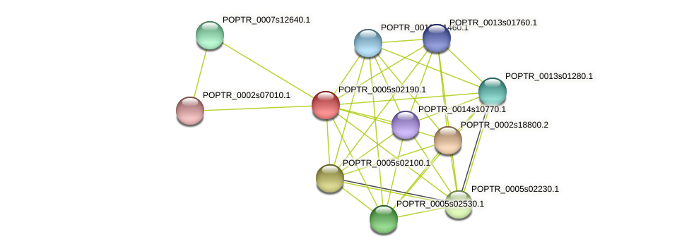 POPTR_0005s02190.1 protein (Populus trichocarpa) - STRING interaction network
