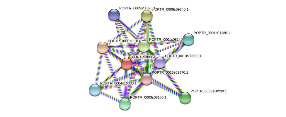 POPTR_0005s02570.1 protein (Populus trichocarpa) - STRING interaction network