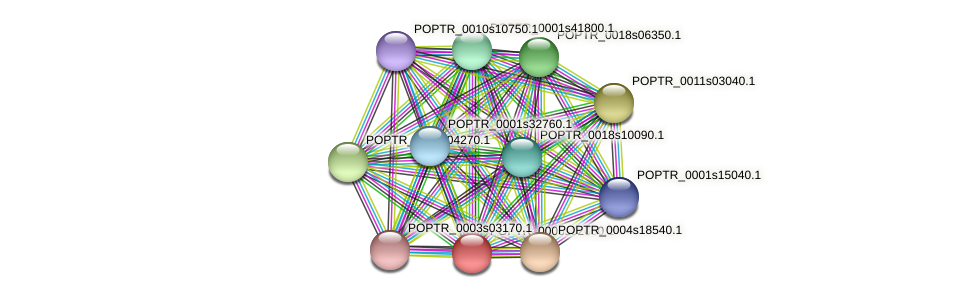 POPTR_0005s02650.1 protein (Populus trichocarpa) - STRING interaction network