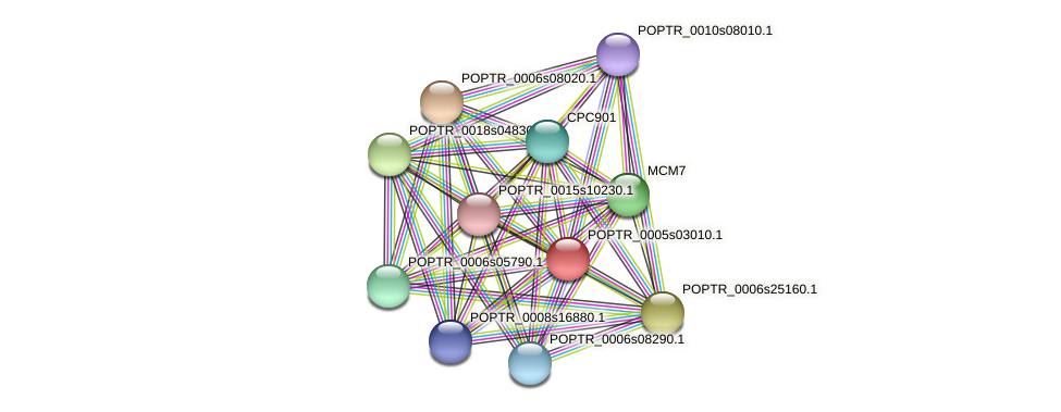 POPTR_0005s03010.1 protein (Populus trichocarpa) - STRING interaction network