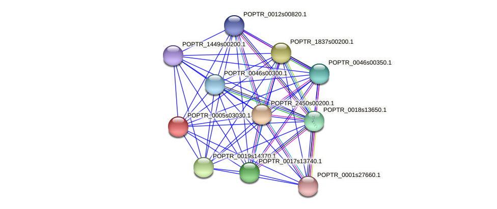 POPTR_0005s03030.1 protein (Populus trichocarpa) - STRING interaction network