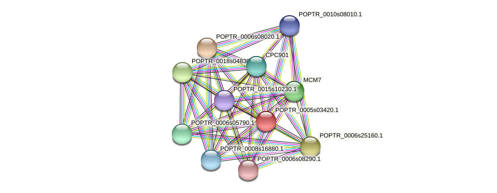 POPTR_0005s03420.1 protein (Populus trichocarpa) - STRING interaction network