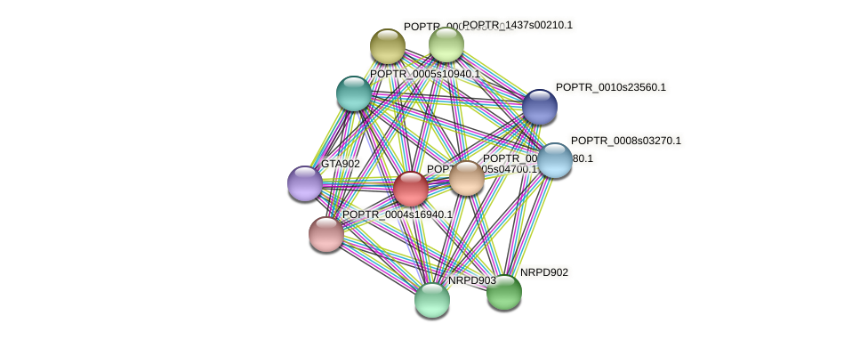 POPTR_0005s04700.1 protein (Populus trichocarpa) - STRING interaction network