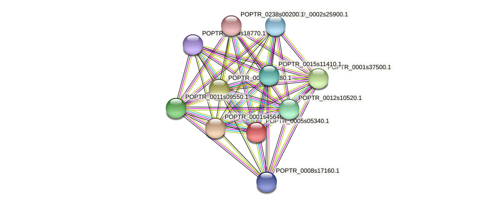 POPTR_0005s05340.1 protein (Populus trichocarpa) - STRING interaction network