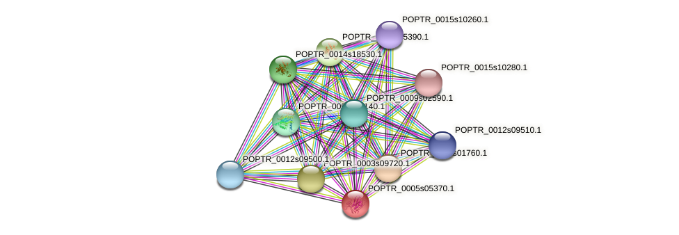 POPTR_0005s05370.1 protein (Populus trichocarpa) - STRING interaction network