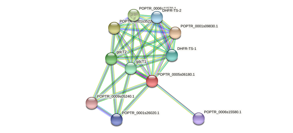 POPTR_0005s06180.1 protein (Populus trichocarpa) - STRING interaction network