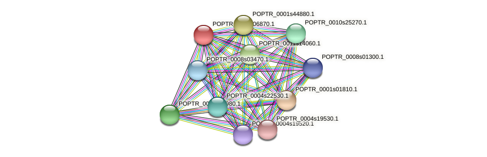 POPTR_0005s06870.1 protein (Populus trichocarpa) - STRING interaction network