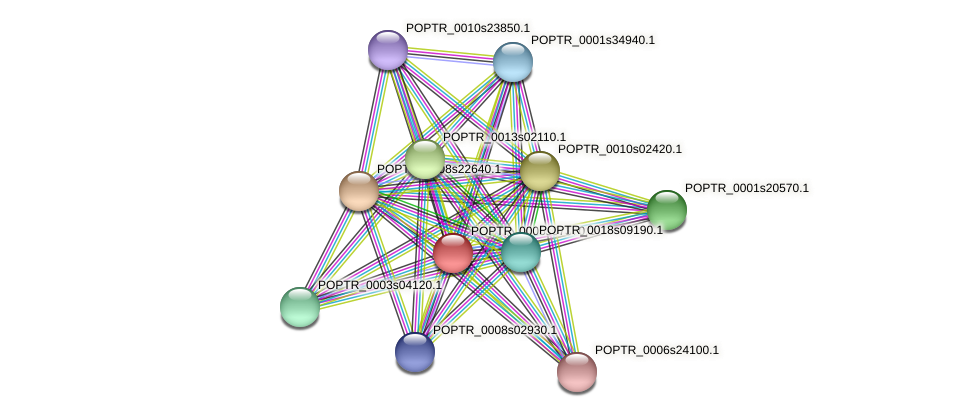 POPTR_0005s07370.1 protein (Populus trichocarpa) - STRING interaction network