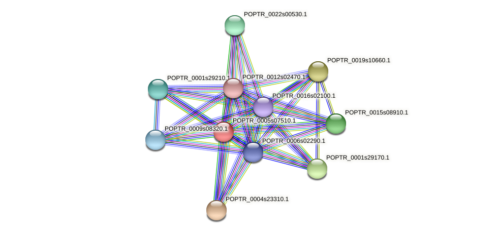 POPTR_0005s07510.1 protein (Populus trichocarpa) - STRING interaction network