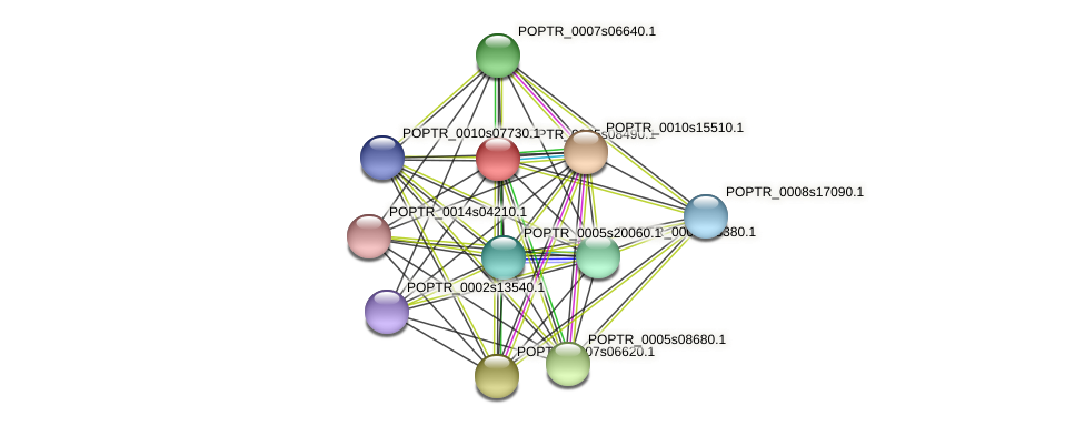 POPTR_0005s08490.1 protein (Populus trichocarpa) - STRING interaction network