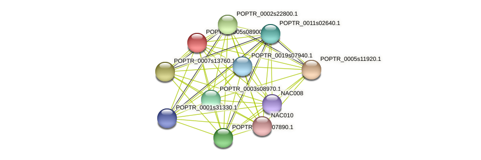POPTR_0005s08900.1 protein (Populus trichocarpa) - STRING interaction network
