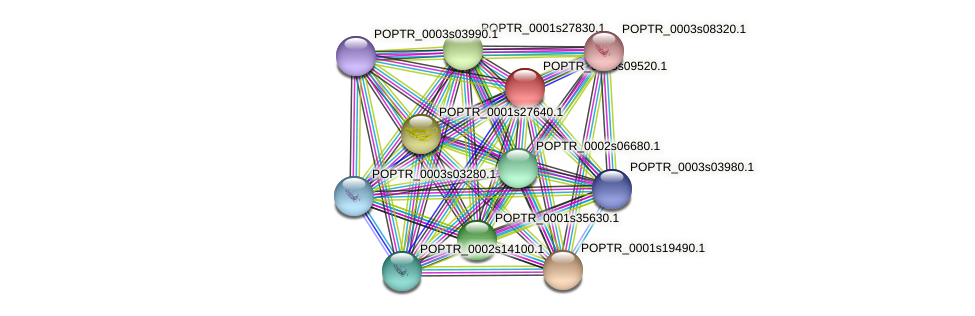 POPTR_0005s09520.1 protein (Populus trichocarpa) - STRING interaction network