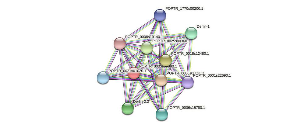 POPTR_0005s09690.1 protein (Populus trichocarpa) - STRING interaction network