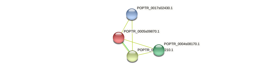 POPTR_0005s09870.1 protein (Populus trichocarpa) - STRING interaction network