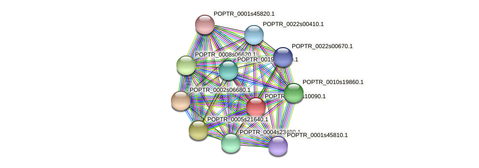 POPTR_0005s10090.1 protein (Populus trichocarpa) - STRING interaction network