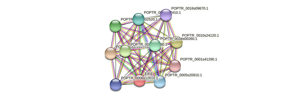 POPTR_0005s10150.1 protein (Populus trichocarpa) - STRING interaction network
