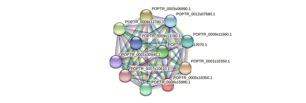 POPTR_0005s10350.1 protein (Populus trichocarpa) - STRING interaction network
