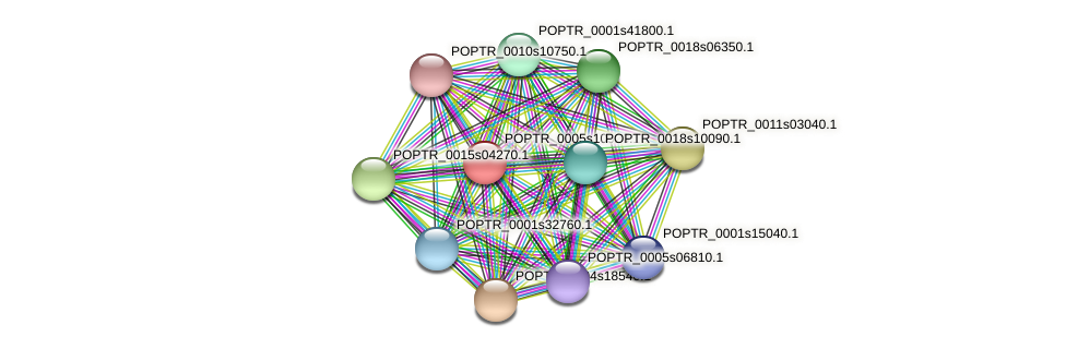 POPTR_0005s10920.1 protein (Populus trichocarpa) - STRING interaction network