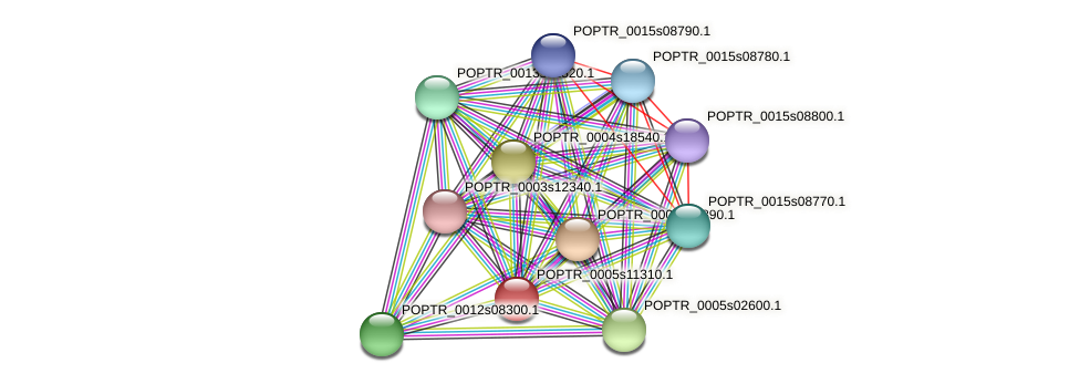 POPTR_0005s11310.1 protein (Populus trichocarpa) - STRING interaction network