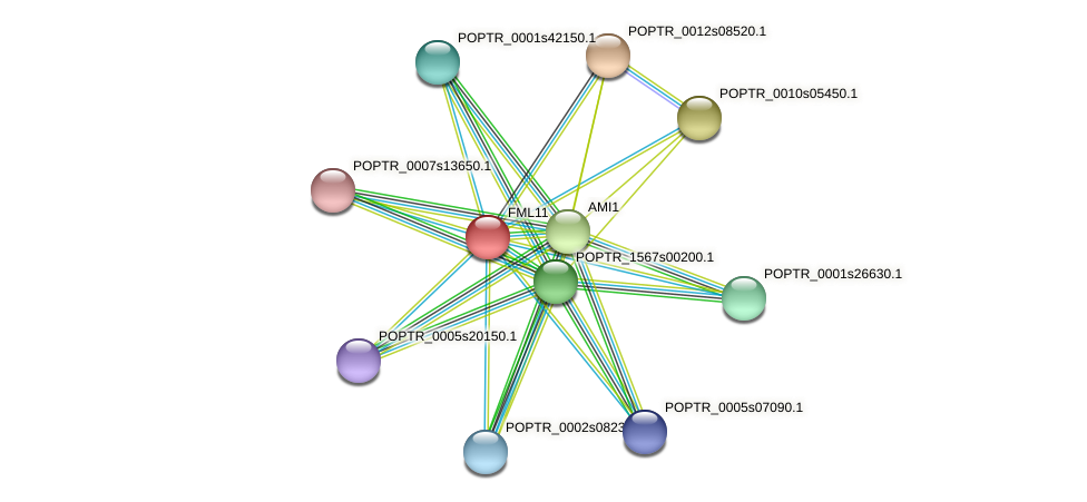 POPTR_0005s11390.1 protein (Populus trichocarpa) - STRING interaction network