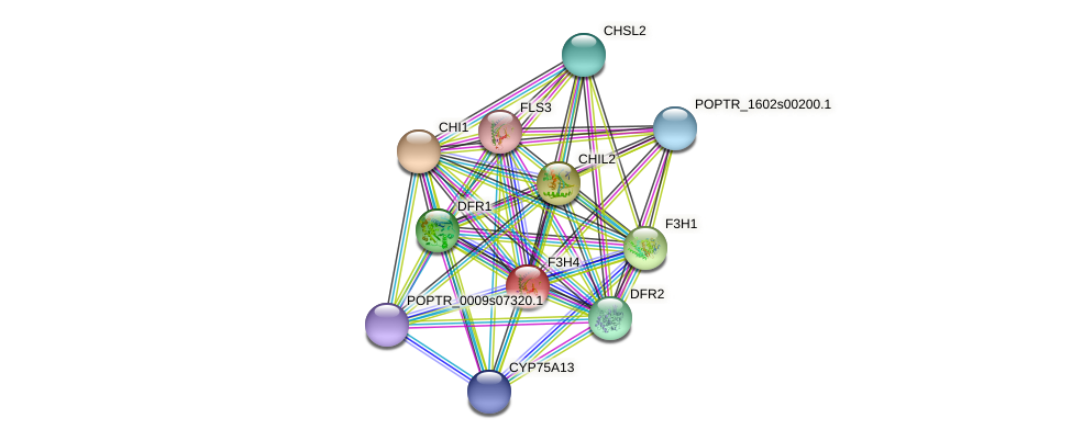 POPTR_0005s11600.1 protein (Populus trichocarpa) - STRING interaction network
