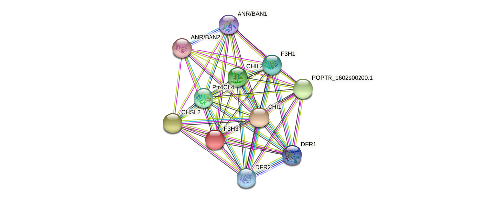 POPTR_0005s11610.1 protein (Populus trichocarpa) - STRING interaction network