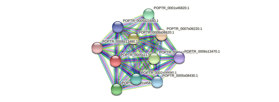 POPTR_0005s11780.1 protein (Populus trichocarpa) - STRING interaction network