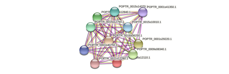 POPTR_0005s12110.1 protein (Populus trichocarpa) - STRING interaction network