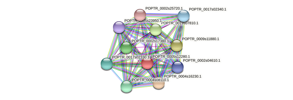 POPTR_0005s12280.1 protein (Populus trichocarpa) - STRING interaction network