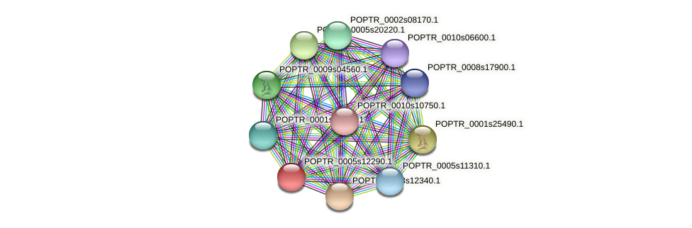 POPTR_0005s12290.1 protein (Populus trichocarpa) - STRING interaction network
