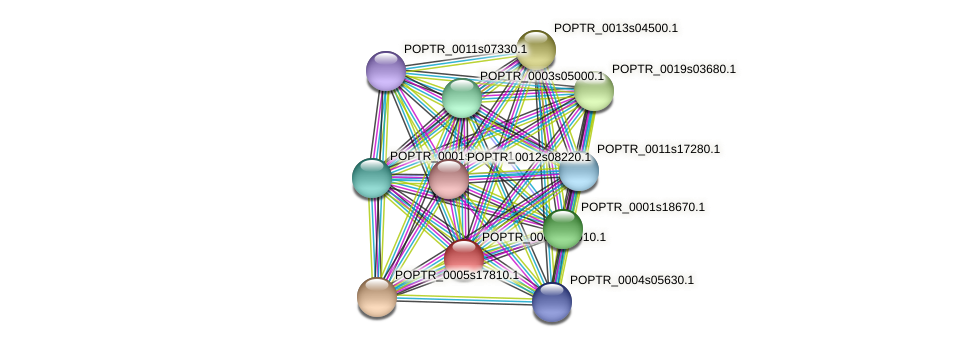 POPTR_0005s12910.1 protein (Populus trichocarpa) - STRING interaction network