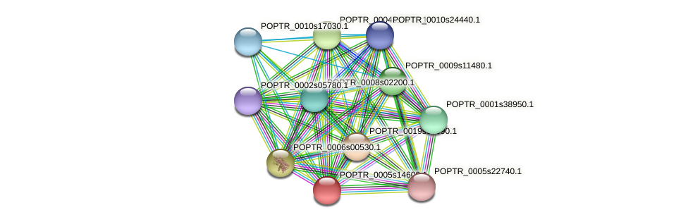 POPTR_0005s14600.1 protein (Populus trichocarpa) - STRING interaction network