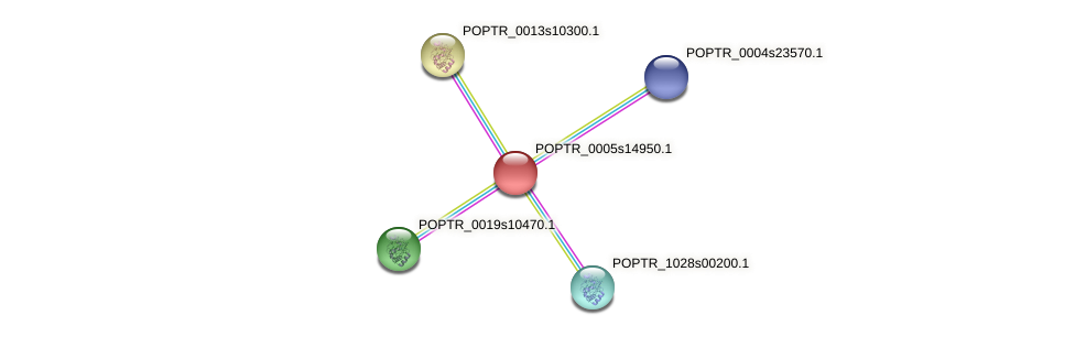 POPTR_0005s14950.1 protein (Populus trichocarpa) - STRING interaction network