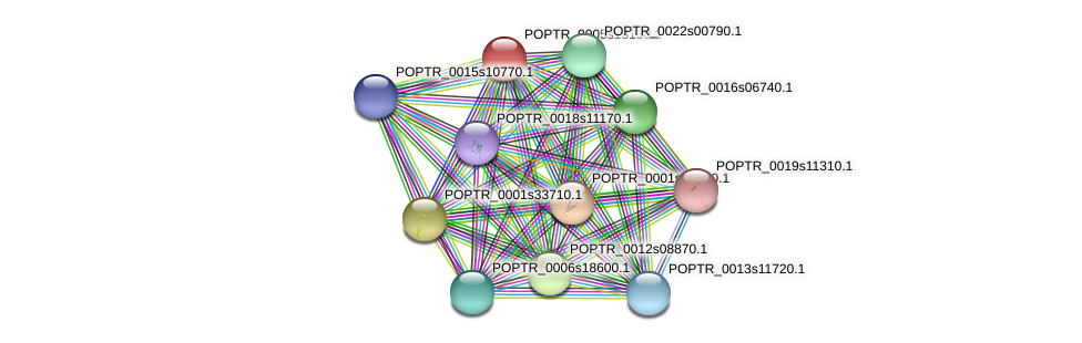 POPTR_0005s15150.1 protein (Populus trichocarpa) - STRING interaction network